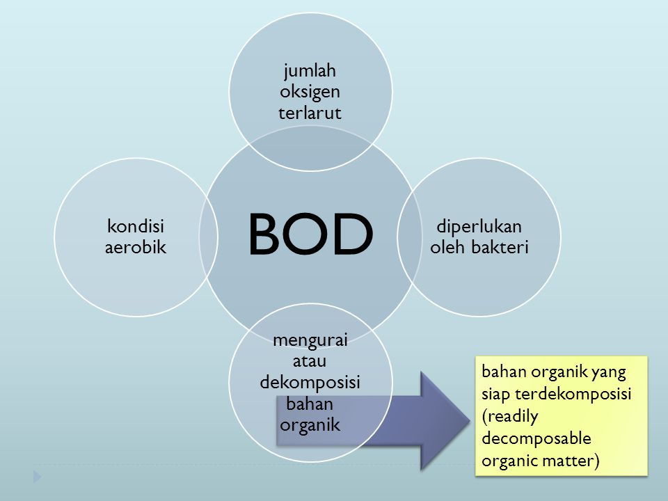 Bacteri high BOD high DO low