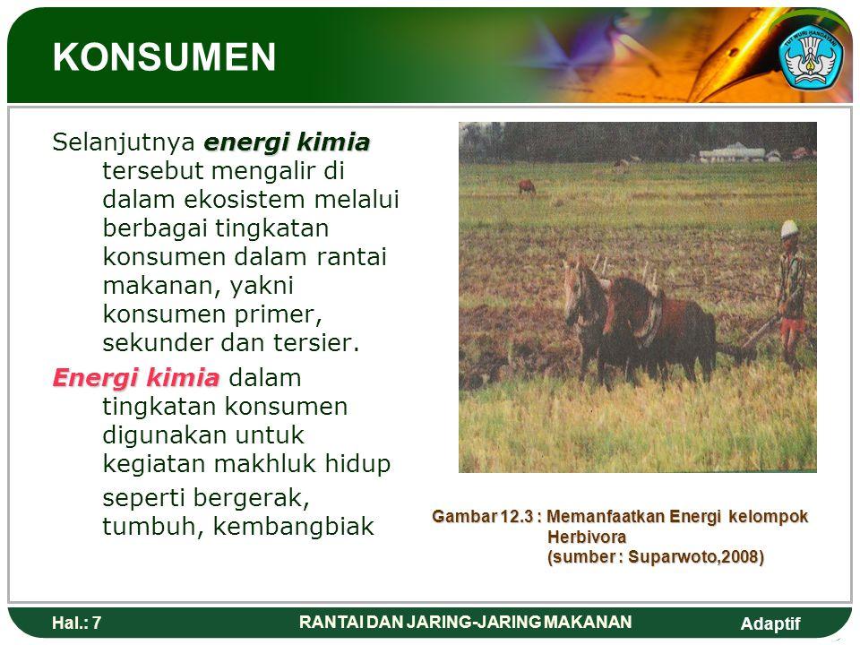 Adaptif Hal.: 8 RANTAI DAN JARING-JARING MAKANAN ALIRAN ENERGI PRODUSEN DALAM EKOSISTEM Gambar 12.4 : Memanfaatkan Energi Kelompok Produsen ( Sumber : Campbell, Biologi Edisi kelima)
