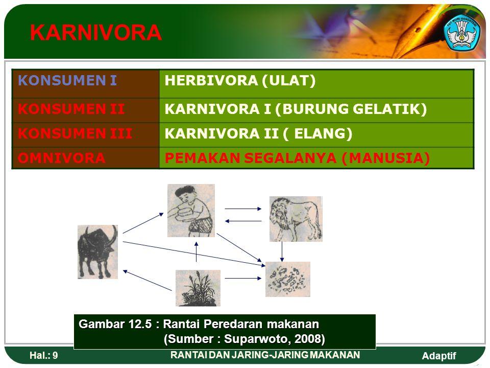 Adaptif Hal.: 10 RANTAI DAN JARING-JARING MAKANAN JARING-JARING MAKANAN semua kemungkinan pemindahan energi dan pemindahan makanan diantara makhluk hidup dalam suatu ekosistem DAUN (TUMBUHAN / PRODUSEN) ULAT (KONSUMEN PRMER) BURUNG GELATIK (KONSUMEN SEKUNDER) ULAR (KONSUMEN TERSIER) BAKTERI JAMUR (Dekomposer)
