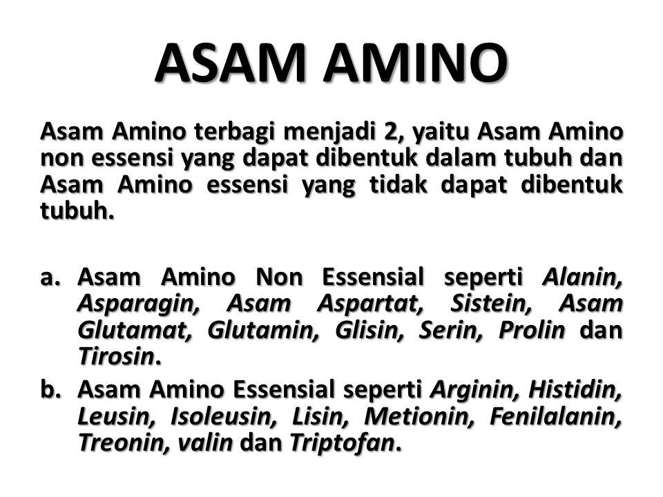 ASAM AMINO Asam Amino terbagi menjadi 2, yaitu Asam Amino non essensi yang dapat dibentuk dalam tubuh dan Asam Amino essensi yang tidak dapat dibentuk tubuh.