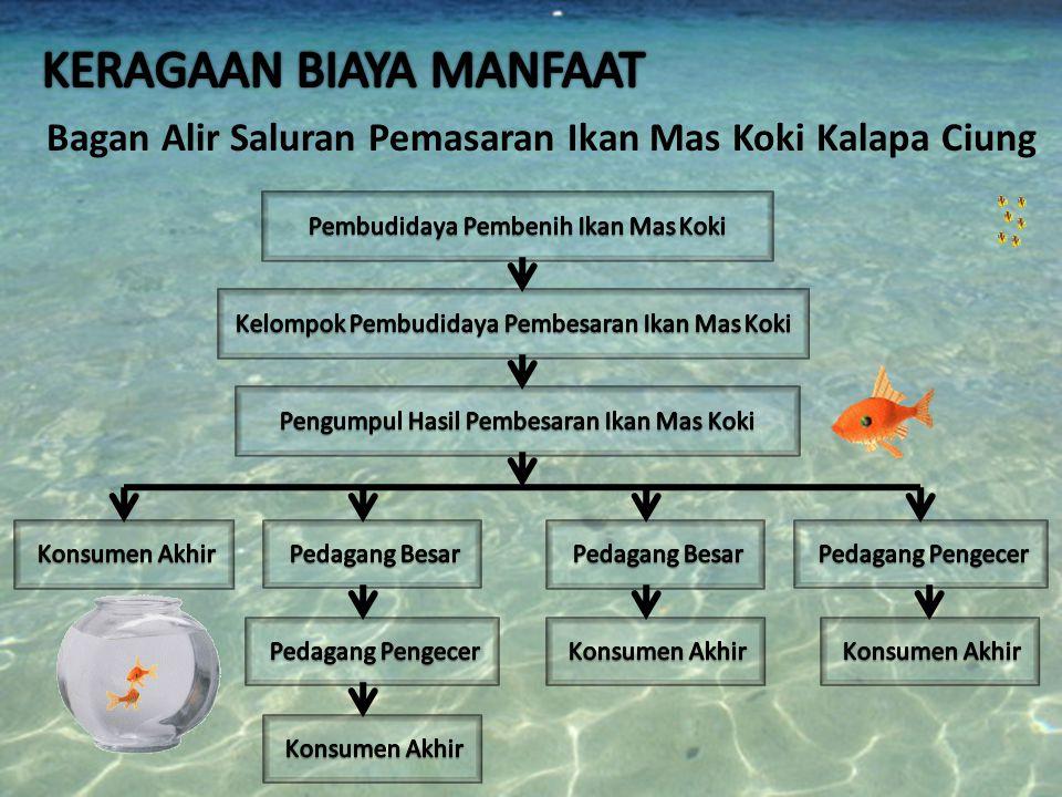Bagan Alir Saluran Pemasaran Ikan Mas Koki Kalapa Ciung