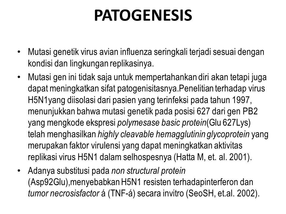 PATOGENESIS • Mutasi genetik virus avian influenza seringkali terjadi sesuai dengan kondisi dan lingkungan replikasinya.