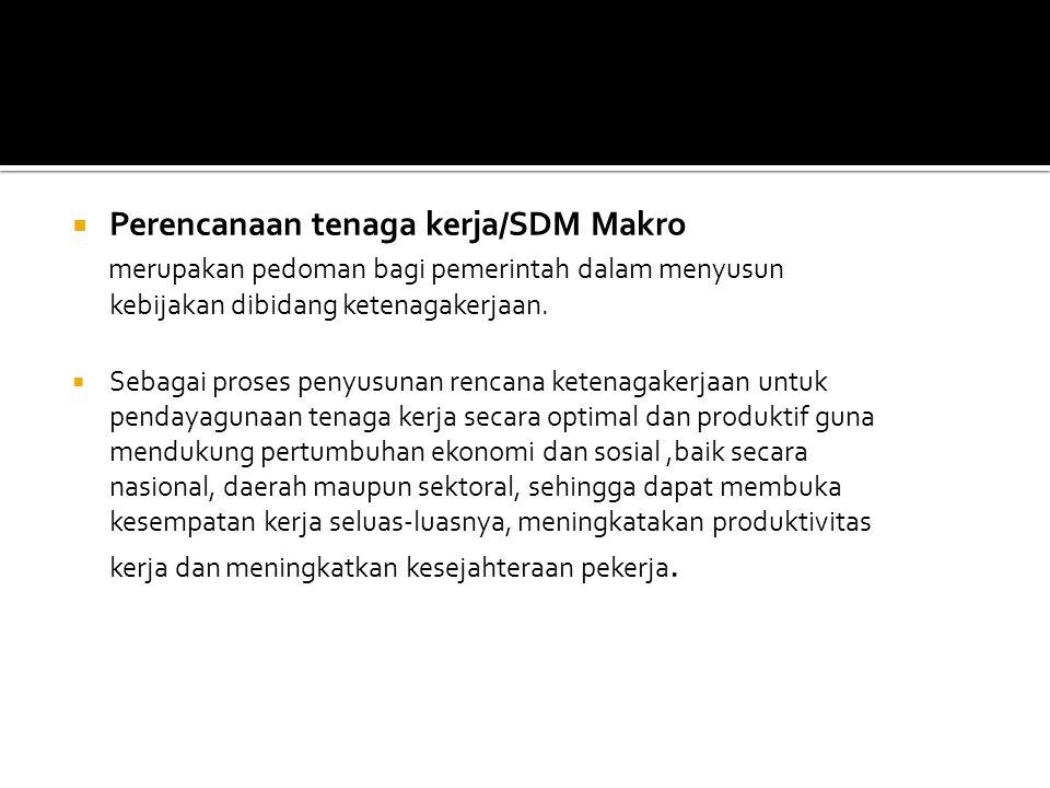 Dilakukan dengan cara : a. Perencanaan tenaga kerja/SDM makro b. Perecanaan tenaga kerja/SDM mikro ( Pasal 7 UU No.13/2003 Tentang Ketenagakerjaan)