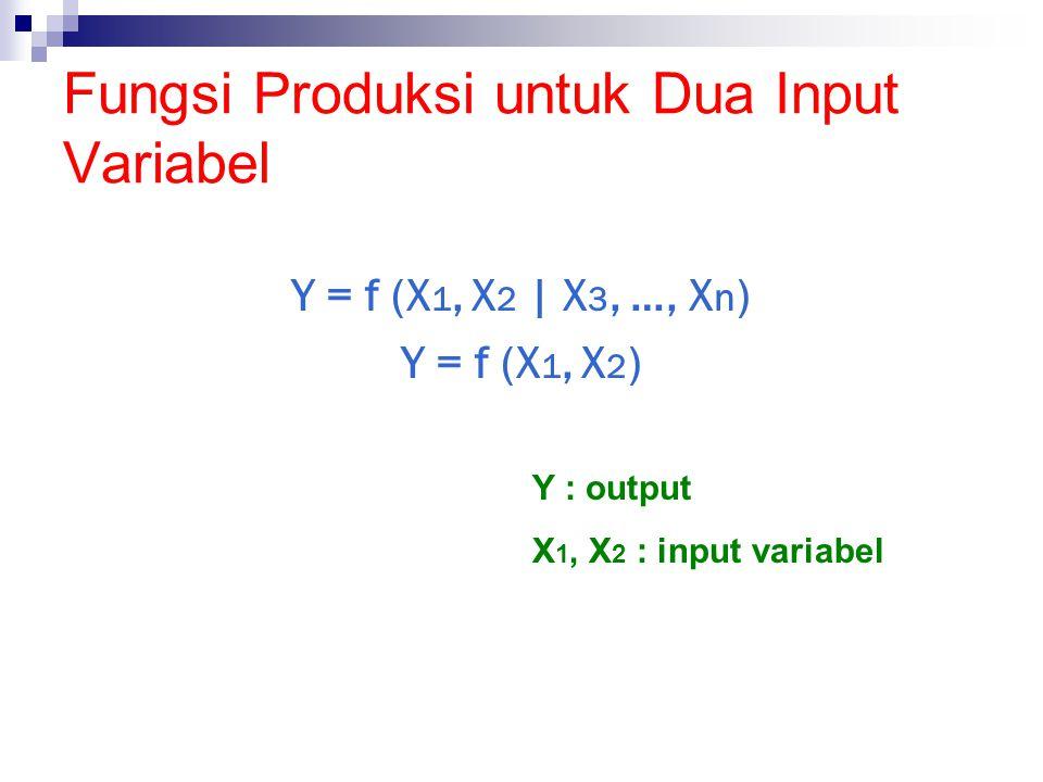 Fungsi Produksi untuk Dua Input Variabel Y = f (X 1, X 2 | X 3, …, X n ) Y = f (X 1, X 2 ) Y : output X 1, X 2 : input variabel