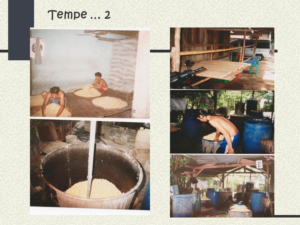 Tempe … 2