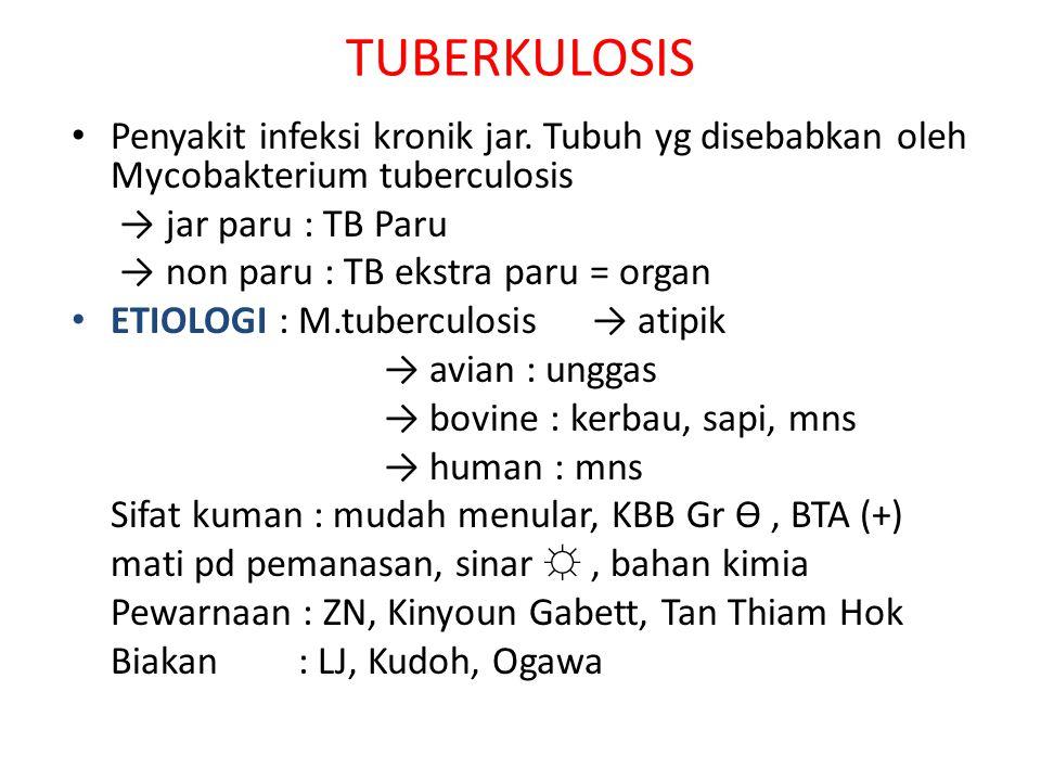 TUBERKULOSIS • Penyakit infeksi kronik jar. Tubuh yg disebabkan oleh Mycobakterium tuberculosis → jar paru : TB Paru → non paru : TB ekstra paru = org
