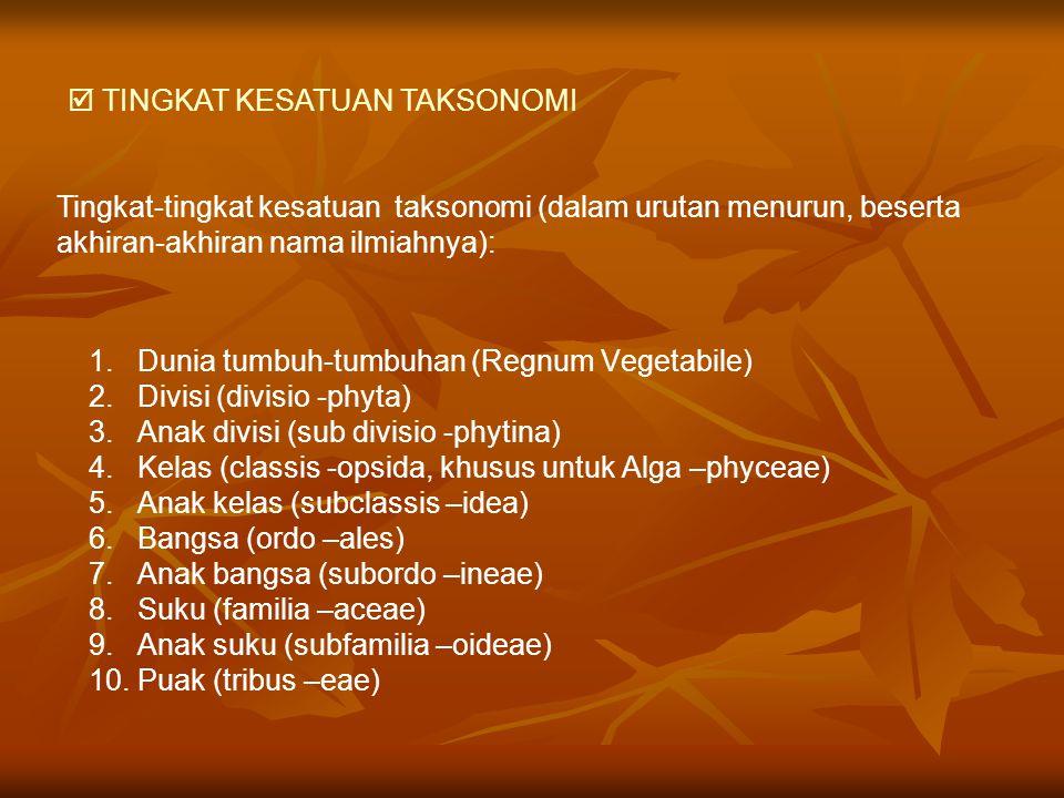 1. Dunia tumbuh-tumbuhan (Regnum Vegetabile) 2. Divisi (divisio -phyta) 3. Anak divisi (sub divisio -phytina) 4. Kelas (classis -opsida, khusus untuk