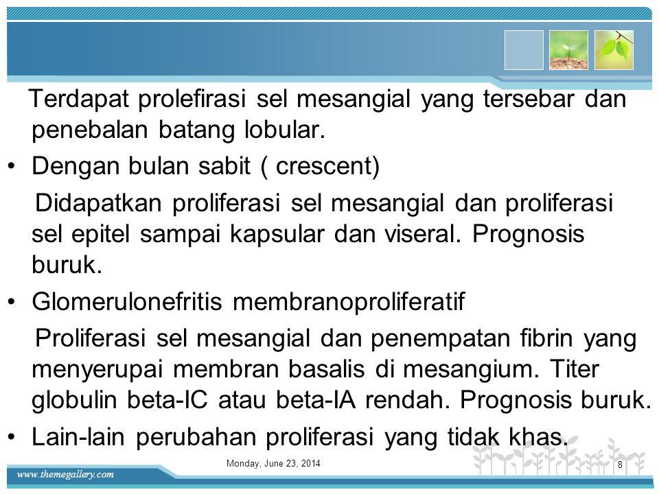 www.themegallery.com b. Nefropati membranosa Semua glomerulus menunjukan penebalan dinding kapiler yang tersebar tanpa proliferasi sel. Prognosis kura