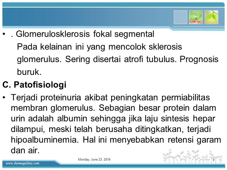 www.themegallery.com Terdapat prolefirasi sel mesangial yang tersebar dan penebalan batang lobular. •Dengan bulan sabit ( crescent) Didapatkan prolife