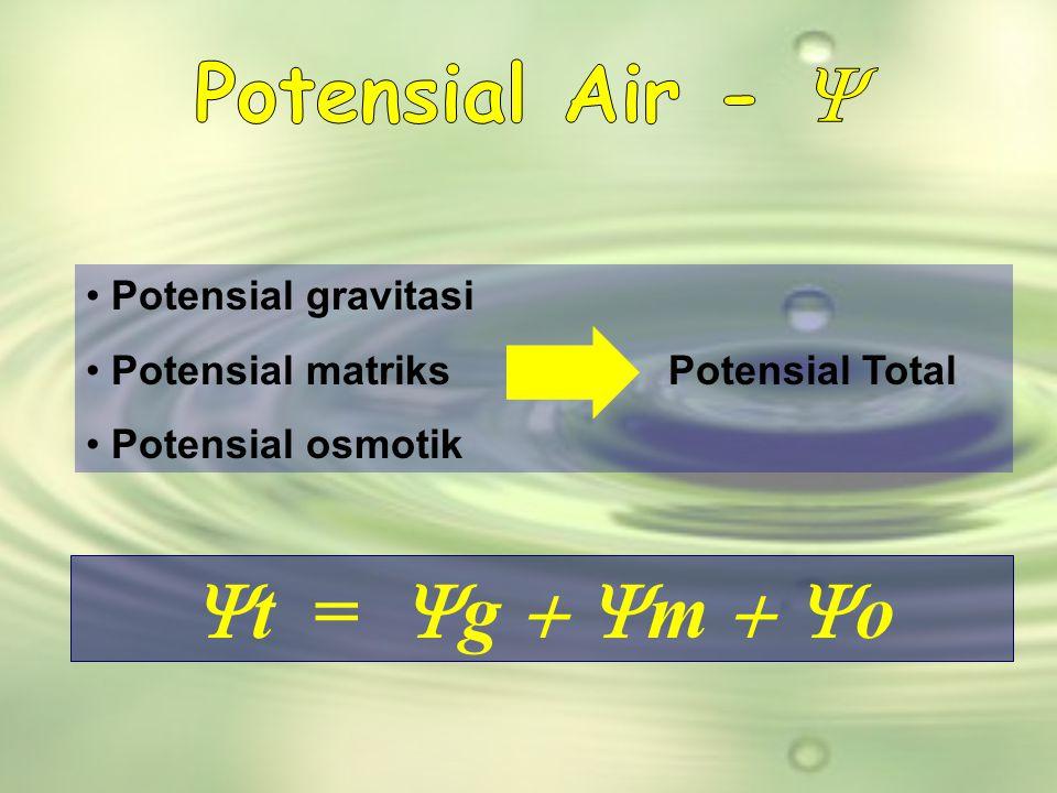  t =  g  m  o • Potensial gravitasi • Potensial matriks Potensial Total • Potensial osmotik