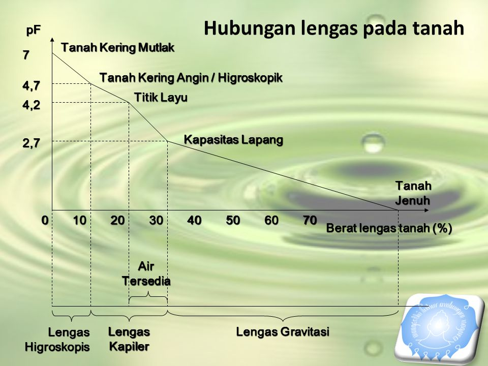010203040506070 Tanah Jenuh 2,7 4,2 4,7 7 Kapasitas Lapang Titik Layu Tanah Kering Angin / Higroskopik Tanah Kering Mutlak Lengas Higroskopis Lengas K