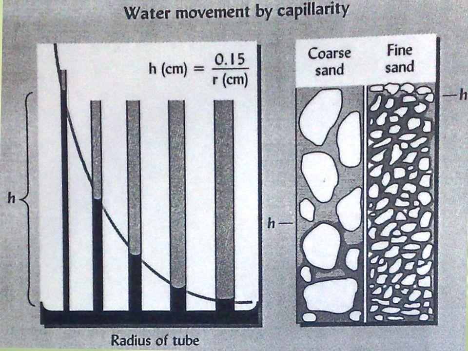 Potensial Gravitasi Ketinggian air dari rujukan Potensial Matriks Adesi & kohesi padatan Rujukan Air murni pada posisi tetap Potensial Osmotik Konsentrasi larutan tanah + 0 -