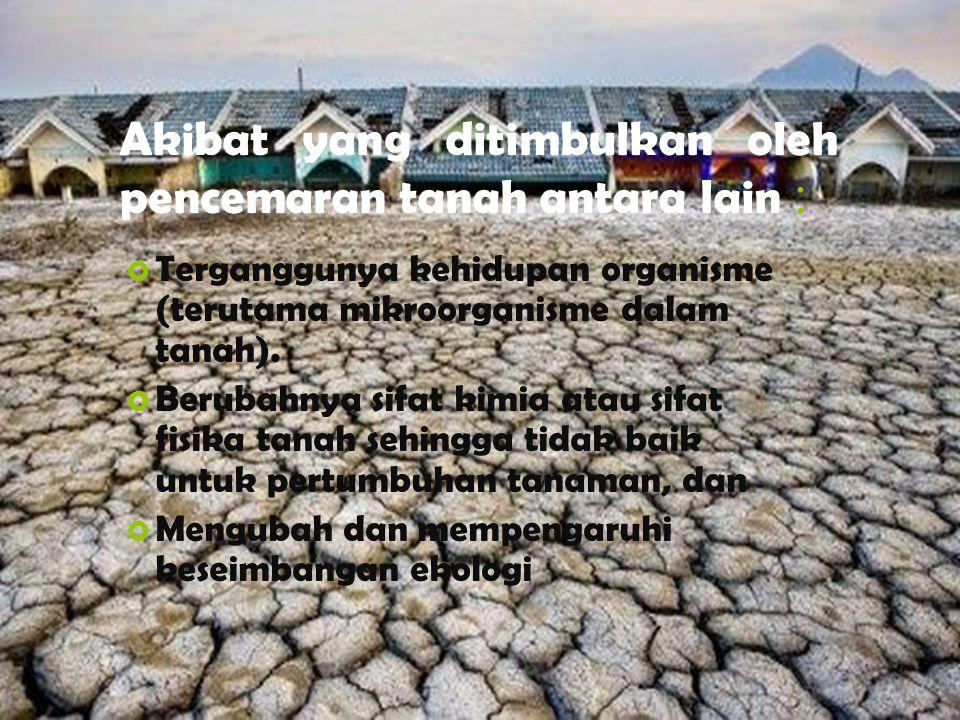 Akibat yang ditimbulkan oleh pencemaran tanah antara lain :  Terganggunya kehidupan organisme (terutama mikroorganisme dalam tanah).  Berubahnya sif