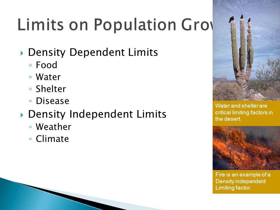  Density Dependent Limits ◦ Food ◦ Water ◦ Shelter ◦ Disease  Density Independent Limits ◦ Weather ◦ Climate Water and shelter are critical limiting factors in the desert.