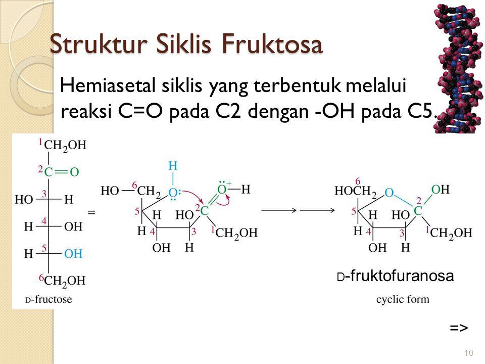 Struktur Siklis Fruktosa Struktur Siklis Fruktosa Hemiasetal siklis yang terbentuk melalui reaksi C=O pada C2 dengan -OH pada C5. 10 => D -fruktofuran