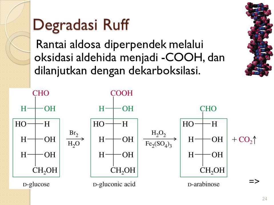 Degradasi Ruff Degradasi Ruff Rantai aldosa diperpendek melalui oksidasi aldehida menjadi -COOH, dan dilanjutkan dengan dekarboksilasi. 24 =>