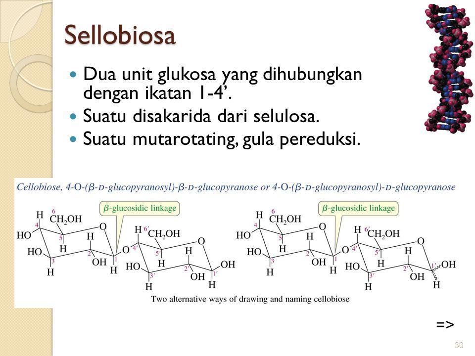 Sellobiosa  Dua unit glukosa yang dihubungkan dengan ikatan 1-4'.  Suatu disakarida dari selulosa.  Suatu mutarotating, gula pereduksi. 30 =>
