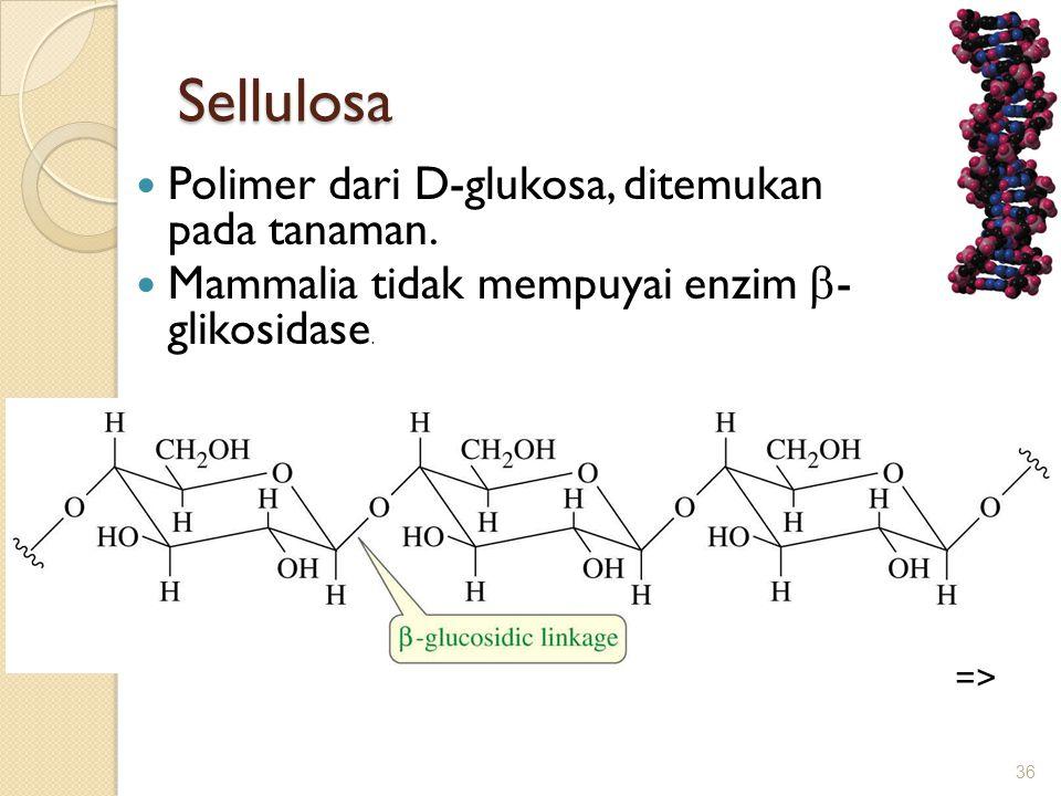 Sellulosa  Polimer dari D-glukosa, ditemukan pada tanaman.  Mammalia tidak mempuyai enzim  - glikosidase. 36 =>