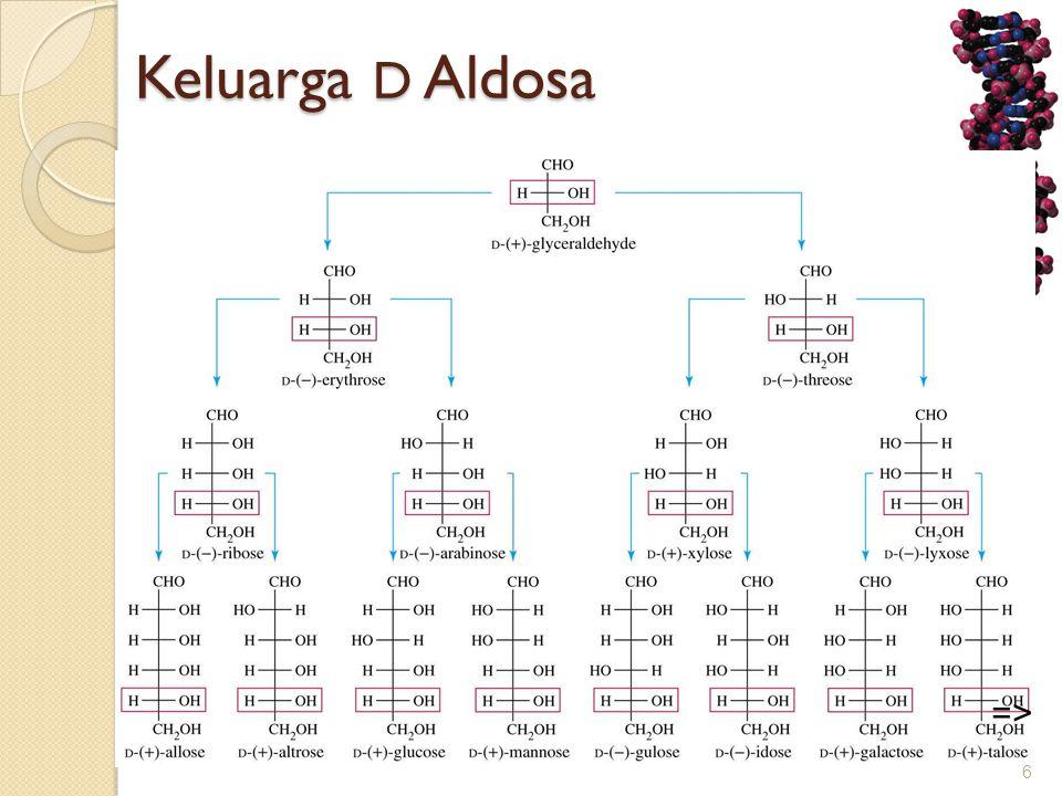 Keluarga D Aldosa 6 =>