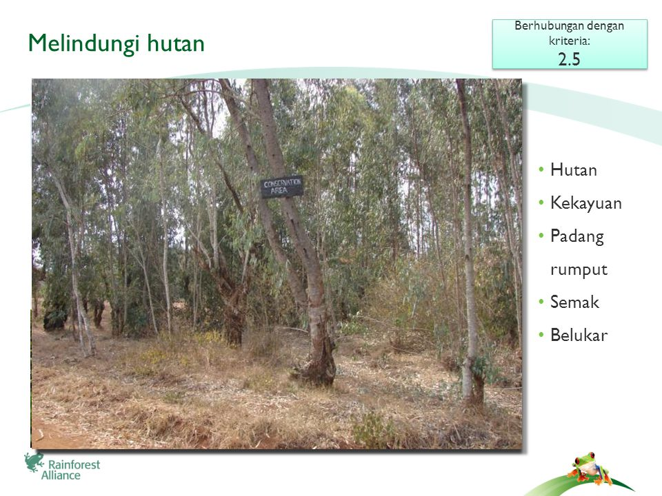 Melindungi hutan Berhubungan dengan kriteria: 2.5 Berhubungan dengan kriteria: 2.5 • Hutan • Kekayuan • Padang rumput • Semak • Belukar