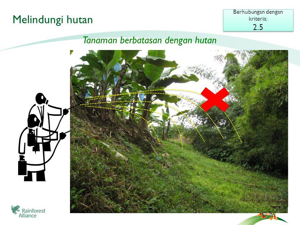 Melindungi hutan Berhubungan dengan kriteria: 2.5 Berhubungan dengan kriteria: 2.5 Tanaman berbatasan dengan hutan