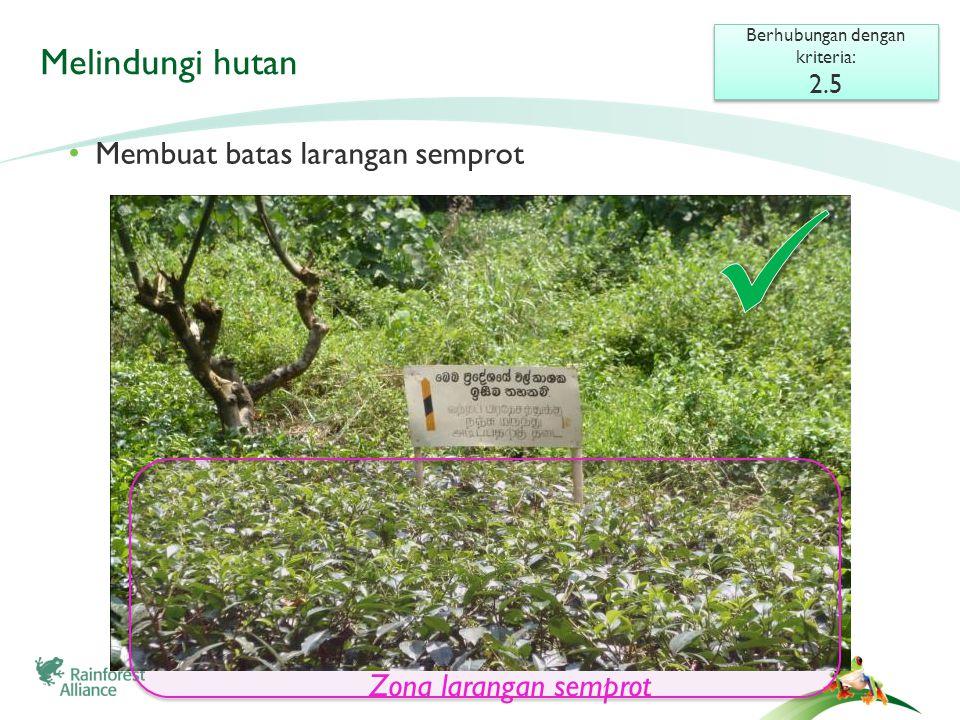 Melindungi hutan Berhubungan dengan kriteria: 2.5 Berhubungan dengan kriteria: 2.5 • Membuat batas larangan semprot Zona larangan semprot