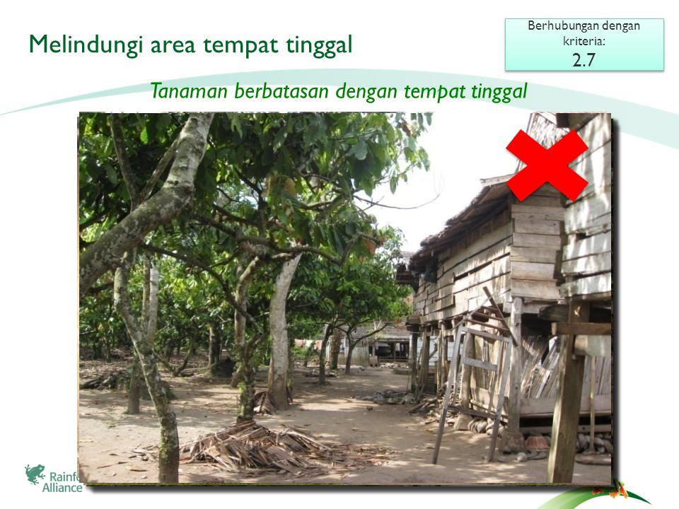 Melindungi area tempat tinggal Berhubungan dengan kriteria: 2.7 Berhubungan dengan kriteria: 2.7 Tanaman berbatasan dengan tempat tinggal