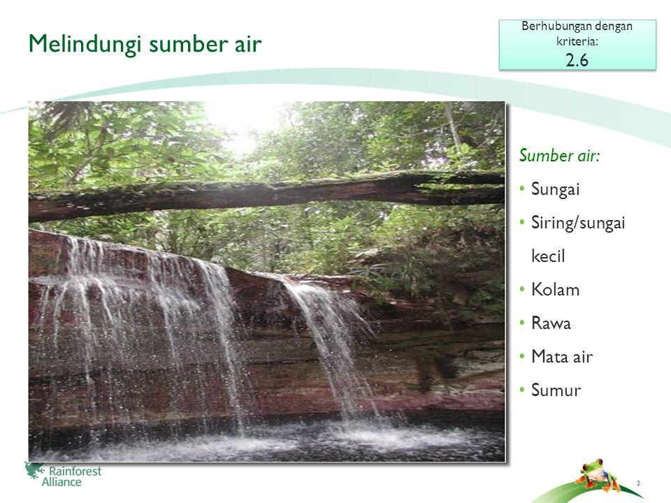 3 Melindungi sumber air Berhubungan dengan kriteria: 2.6 Berhubungan dengan kriteria: 2.6 Sumber air: • Sungai • Siring/sungai kecil • Kolam • Rawa • Mata air • Sumur