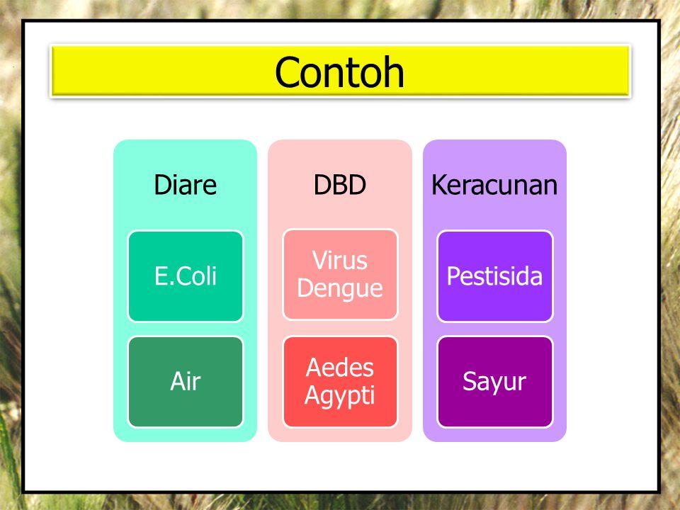 Contoh Diare E.ColiAir DBD Virus Dengue Aedes Agypti Keracunan PestisidaSayur