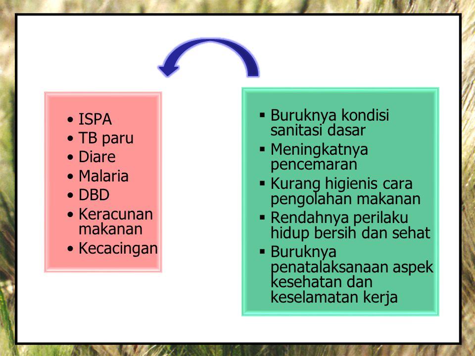 •ISPA •TB paru •Diare •Malaria •DBD •Keracunan makanan •Kecacingan  Buruknya kondisi sanitasi dasar  Meningkatnya pencemaran  Kurang higienis cara