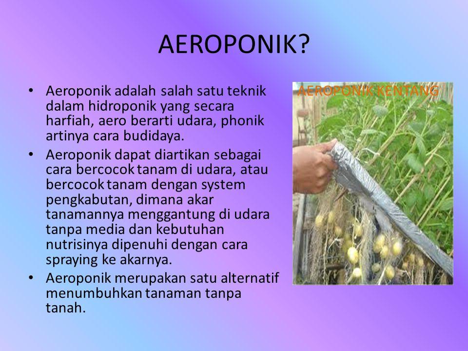 AEROPONIK? • Aeroponik adalah salah satu teknik dalam hidroponik yang secara harfiah, aero berarti udara, phonik artinya cara budidaya. • Aeroponik da