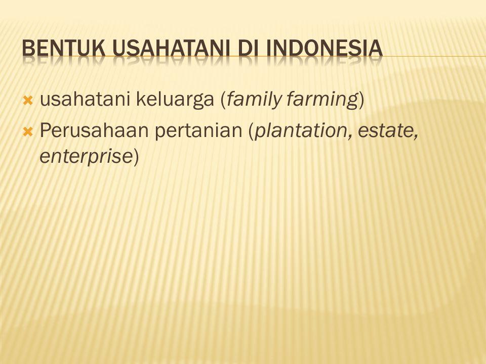  usahatani keluarga (family farming)  Perusahaan pertanian (plantation, estate, enterprise)