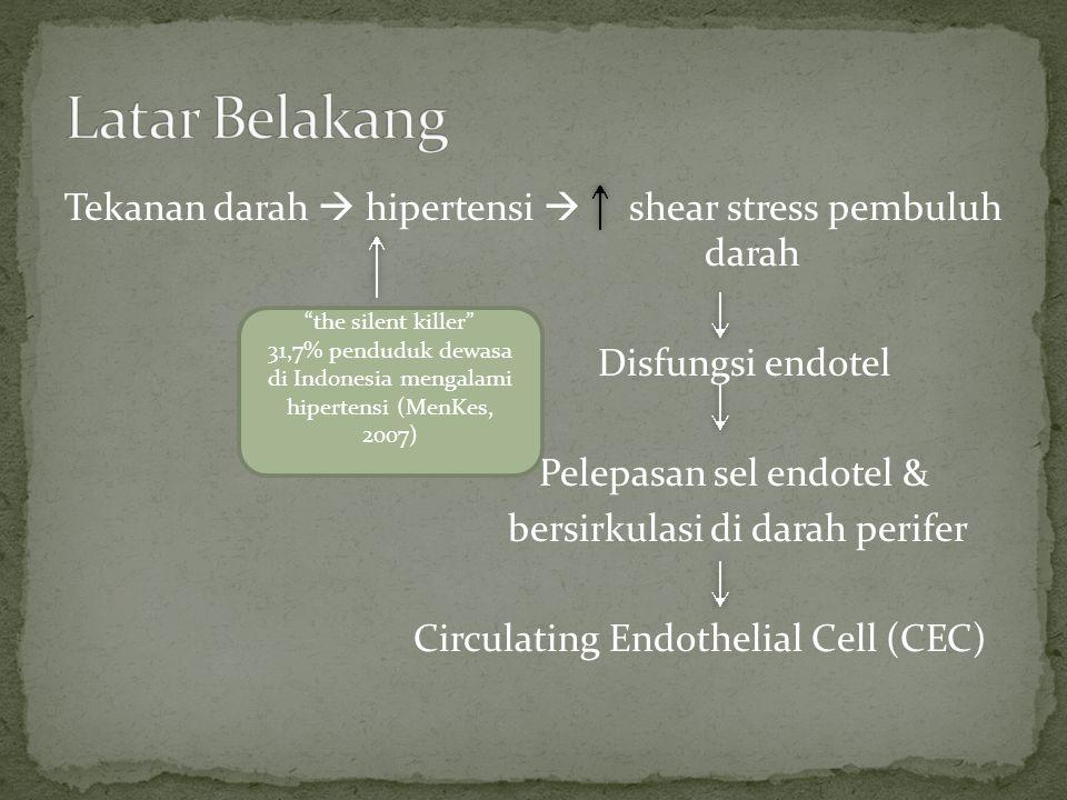 Klasifikasi hipertensi Normal:sistole <130 mmHg dan/atau diastole <90 mmHg Hipertensi:sistole >140 mmHg dan/atau diastole >90 mmHg ↓ sintesis NO, ↑kadar endotelin, pembentukan radikal bebasO2 Homeostasis terganggu, gangguan vasodilatasi pembuluh darah Tidak Dapat dimodifikasi: Usia, jenis kelamin, riwayat keluarga, kelainan genetik Dapat dimodifikasi: Hiperlipidemia, hipertensi, merokok, diabetes Disfungsi Endotel Sel Endotel Normal Pelepasan sel endotel, Bersirkulasi di darah Circulating endothelial Cells (CEC) di Darah Perifer