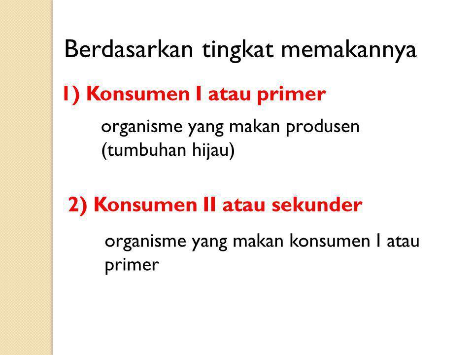 organisme yang makan konsumen I atau primer Berdasarkan tingkat memakannya 1) Konsumen I atau primer organisme yang makan produsen (tumbuhan hijau) 2)
