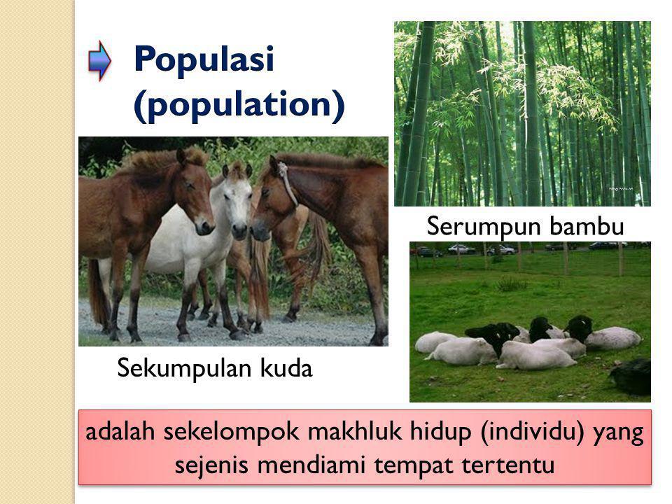 adalah sekelompok makhluk hidup (individu) yang sejenis mendiami tempat tertentu Sekumpulan kuda Serumpun bambu