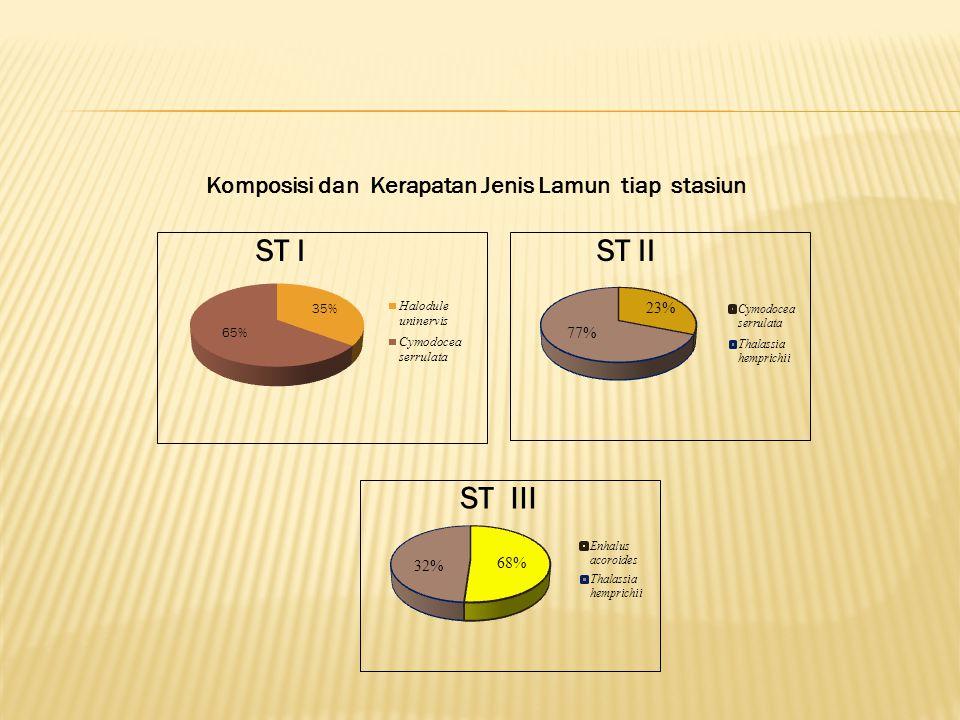 ST IST II ST III Komposisi dan Kerapatan Jenis Lamun tiap stasiun