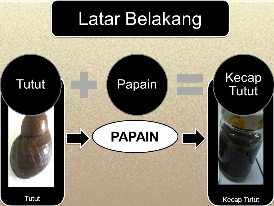 Daging tutut hasil fermentasi ditambah 200 ml air matang Dimasak (10 menit pada suhu 80 0 C)Disaring (Penyaringan I)Pemasukan bumbu-bumbuDimasak (20 menit pada suhu 70 0 C-80 0 C)Disaring (penyaringan II)Kecap TututDibotolkan Proses Pembuatan Kecap Tutut