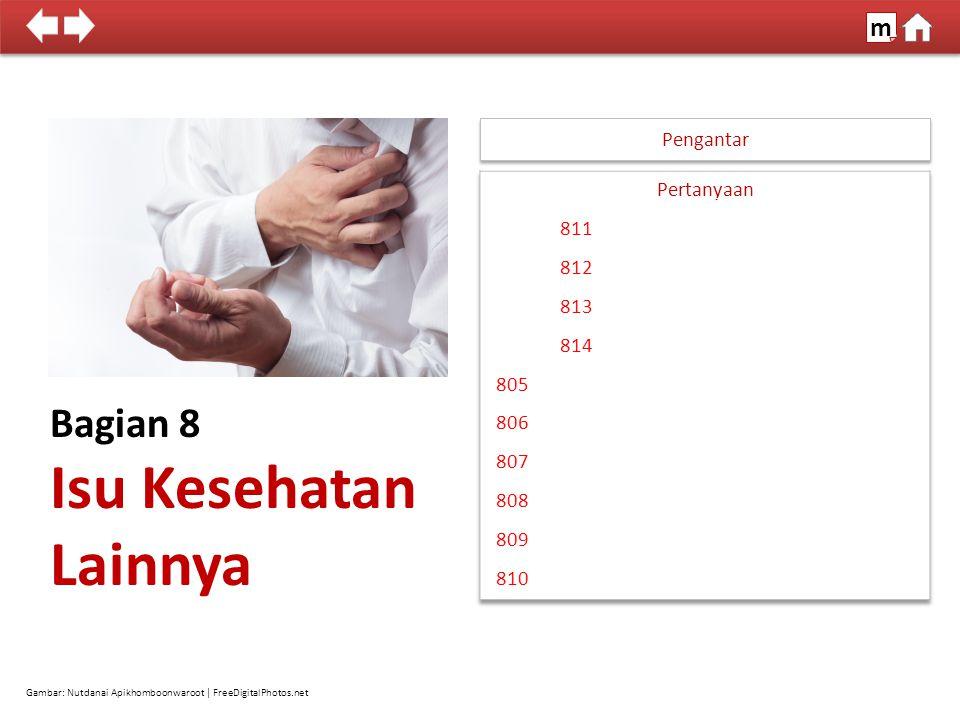 Bagian 8 Isu Kesehatan Lainnya Pengantar Gambar: Nutdanai Apikhomboonwaroot | FreeDigitalPhotos.net 100% SDKI 2012 m