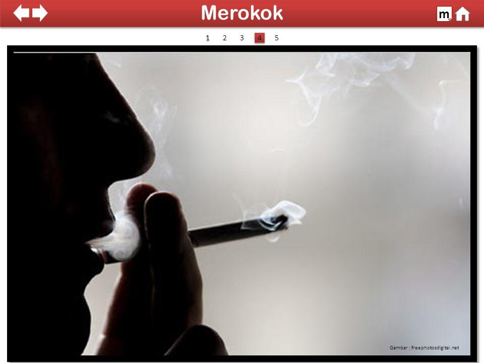 100% SDKI 2012 Gambar : freephotosdigital.net Merokok m 1 1 4 4