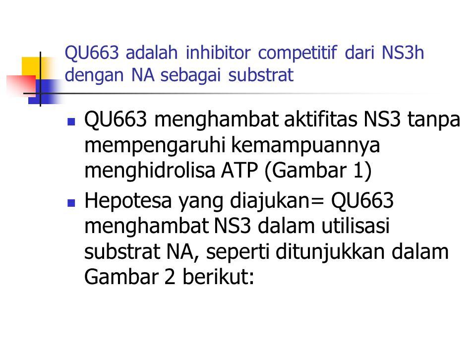 QU663 adalah inhibitor competitif dari NS3h dengan NA sebagai substrat  QU663 menghambat aktifitas NS3 tanpa mempengaruhi kemampuannya menghidrolisa ATP (Gambar 1)  Hepotesa yang diajukan= QU663 menghambat NS3 dalam utilisasi substrat NA, seperti ditunjukkan dalam Gambar 2 berikut: