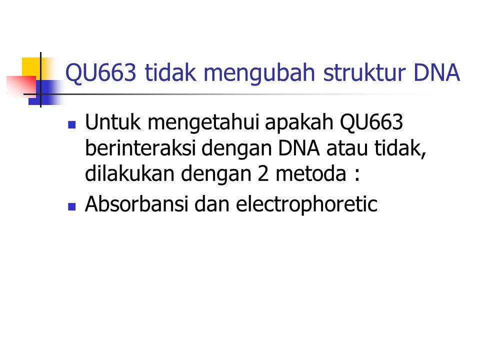 QU663 tidak mengubah struktur DNA  Untuk mengetahui apakah QU663 berinteraksi dengan DNA atau tidak, dilakukan dengan 2 metoda :  Absorbansi dan ele