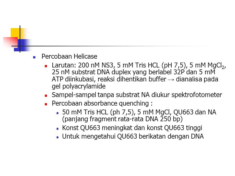  Percobaan Helicase  Larutan: 200 nM NS3, 5 mM Tris HCL (pH 7,5), 5 mM MgCl 2, 25 nM substrat DNA duplex yang berlabel 32P dan 5 mM ATP diinkubasi,