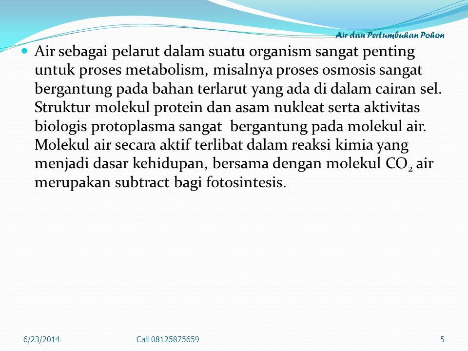 Air dan Pertumbuhan Pohon  Air sebagai pelarut dalam suatu organism sangat penting untuk proses metabolism, misalnya proses osmosis sangat bergantung pada bahan terlarut yang ada di dalam cairan sel.