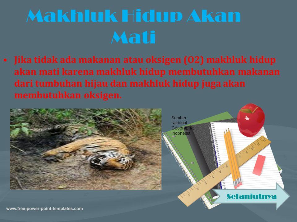 Makhluk Hidup Akan Mati •Jika tidak ada makanan atau oksigen (O2) makhluk hidup akan mati karena makhluk hidup membutuhkan makanan dari tumbuhan hijau