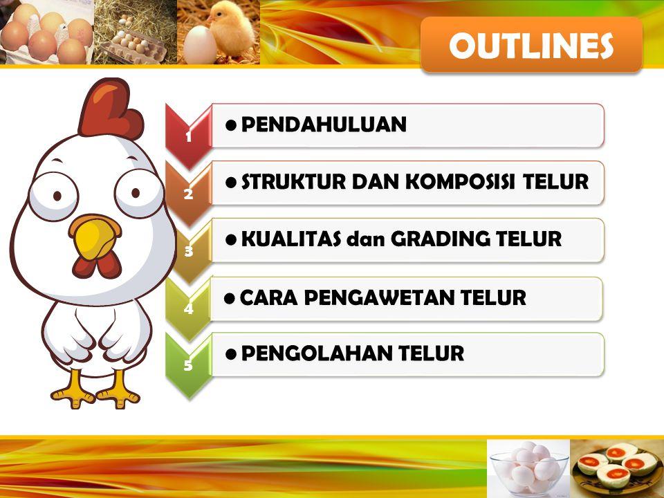 STRUKTUR TELUR KUNING TELUR 30% dari berat telur Warna kuning telur tergantung pada tipe dan jumlah xantophyll dalam pakan
