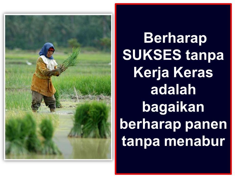 Berharap SUKSES tanpa Kerja Keras adalah bagaikan berharap panen tanpa menabur