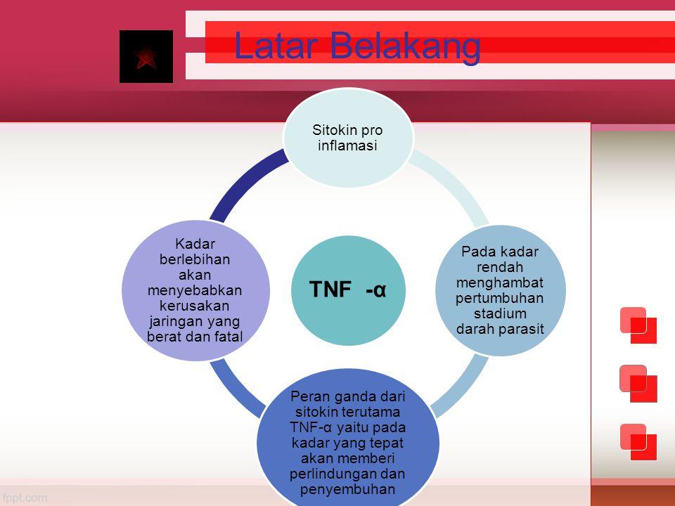 Latar Belakang TNF -α Sitokin pro inflamasi Pada kadar rendah menghambat pertumbuhan stadium darah parasit Peran ganda dari sitokin terutama TNF-α yai
