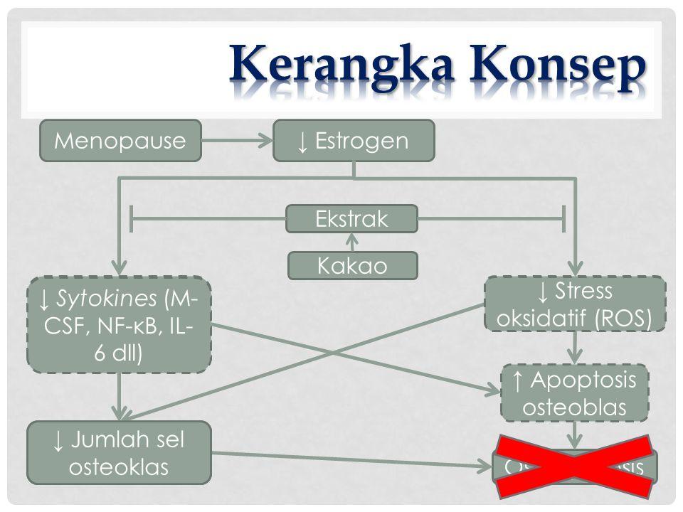 Menopause↓ Estrogen ↑ Sytokines (M- CSF, NF-κB, IL- 6 dll) ↑ Stress oksidatif (ROS) ↑ Apoptosis osteoblas ↑ Jumlah sel osteoklas Osteoporosis Kakao Ekstrak ↓ Sytokines (M- CSF, NF-κB, IL- 6 dll) ↓ Stress oksidatif (ROS) ↓ Jumlah sel osteoklas