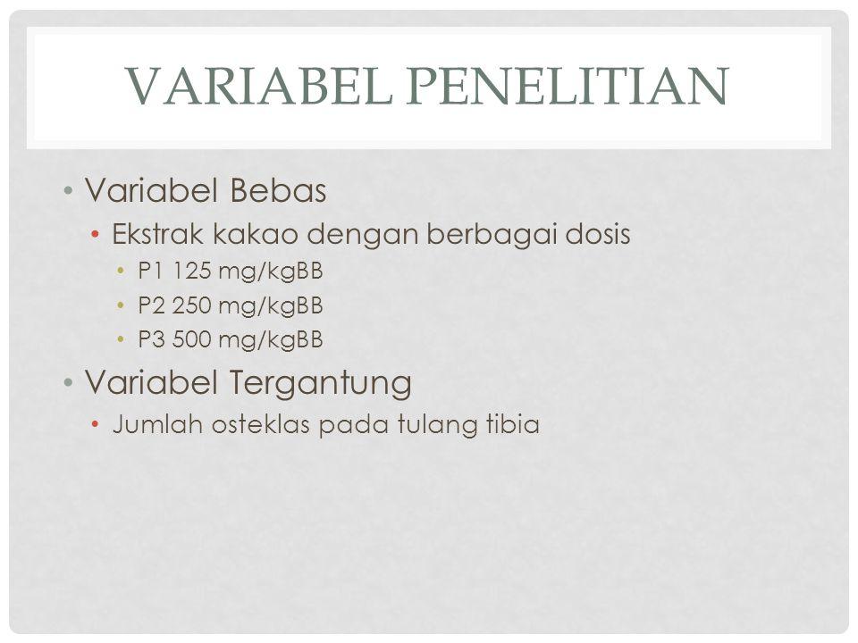 VARIABEL PENELITIAN • Variabel Bebas • Ekstrak kakao dengan berbagai dosis • P1 125 mg/kgBB • P2 250 mg/kgBB • P3 500 mg/kgBB • Variabel Tergantung • Jumlah osteklas pada tulang tibia
