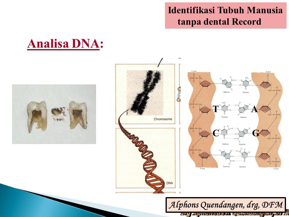 Analisa DNA: TA GC Identifikasi Tubuh Manusia tanpa dental Record Alphons Quendangen, drg, DFM